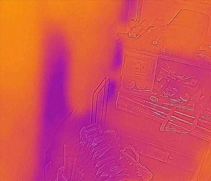 Mitigating Water Damage - Thermal Image Capture
