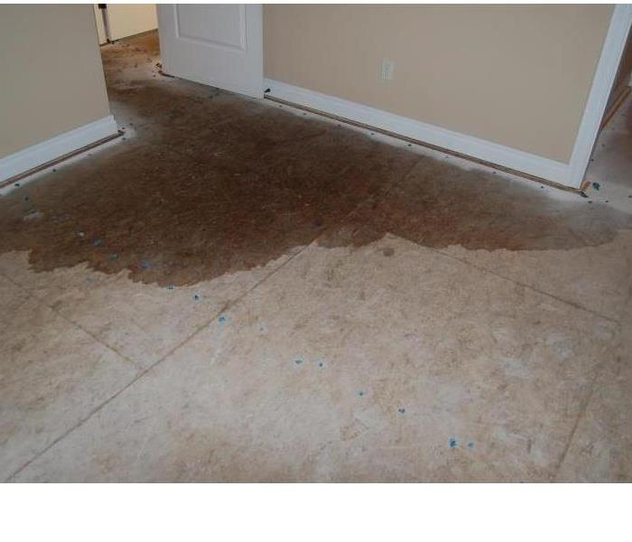 Water Damage Water Damage: Common Causes in Alexandria