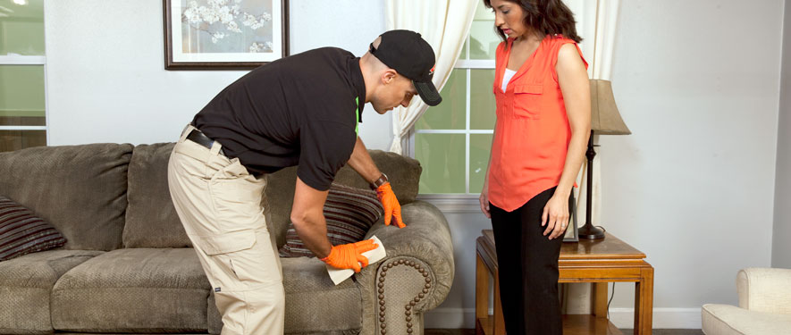 Alexandria, VA carpet upholstery cleaning