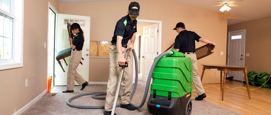 Alexandria, VA cleaning services